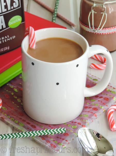 peppermint-mocha-coffee-creamer-WM-3