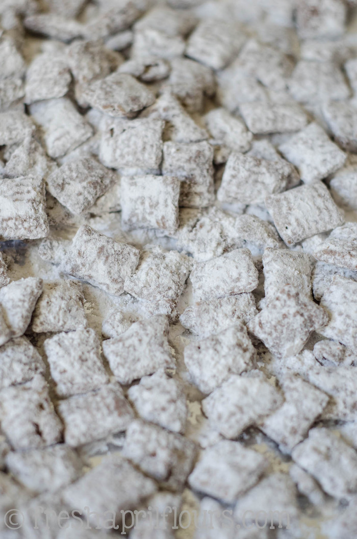 biscoff-puppy-chow-4
