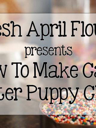 VIDEO: How To Make Cake Batter Puppy Chow + The Chow Down GIVEAWAY!