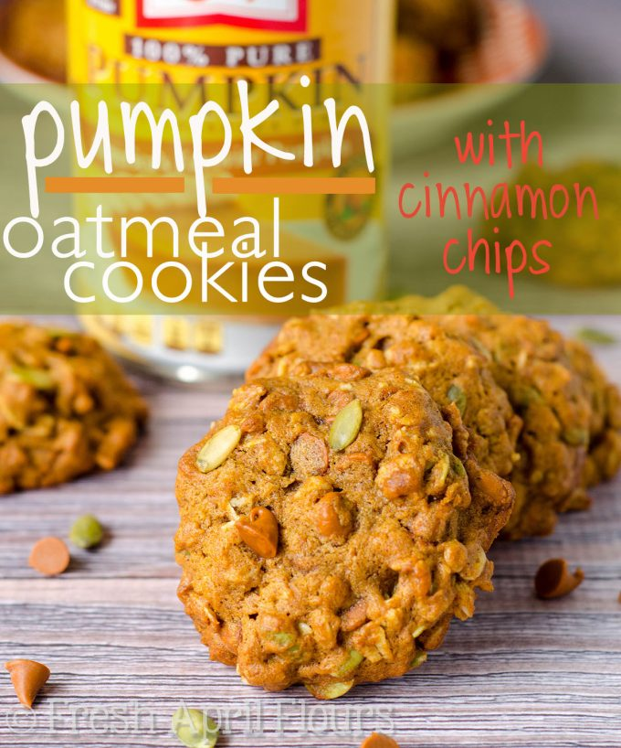 Pumpkin Oatmeal Cookies: Oatmeal cookies get a fall makeover! These cookies are packed with real pumpkin, warm spices, crunchy pepitas (pumpkin seeds), and sweet cinnamon chips.