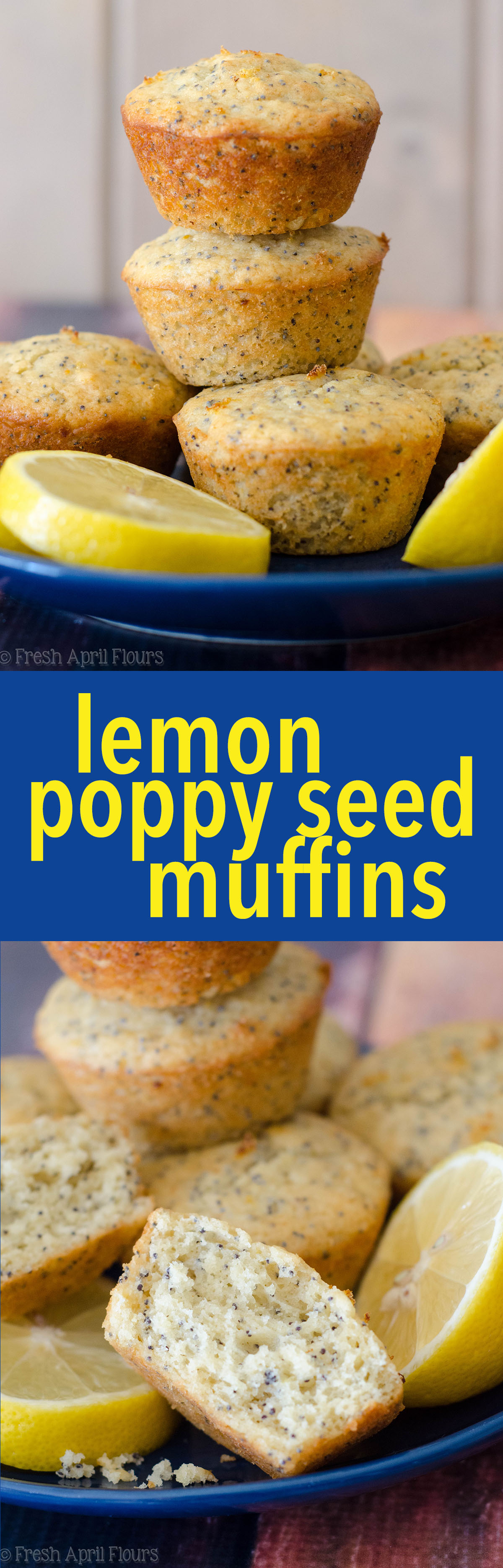 Lemon Poppy Seed Muffins: Moist and fluffy lemon muffins dotted with plenty of poppy seeds. Slightly crunchy on the outside and soft and flavorful on the inside.