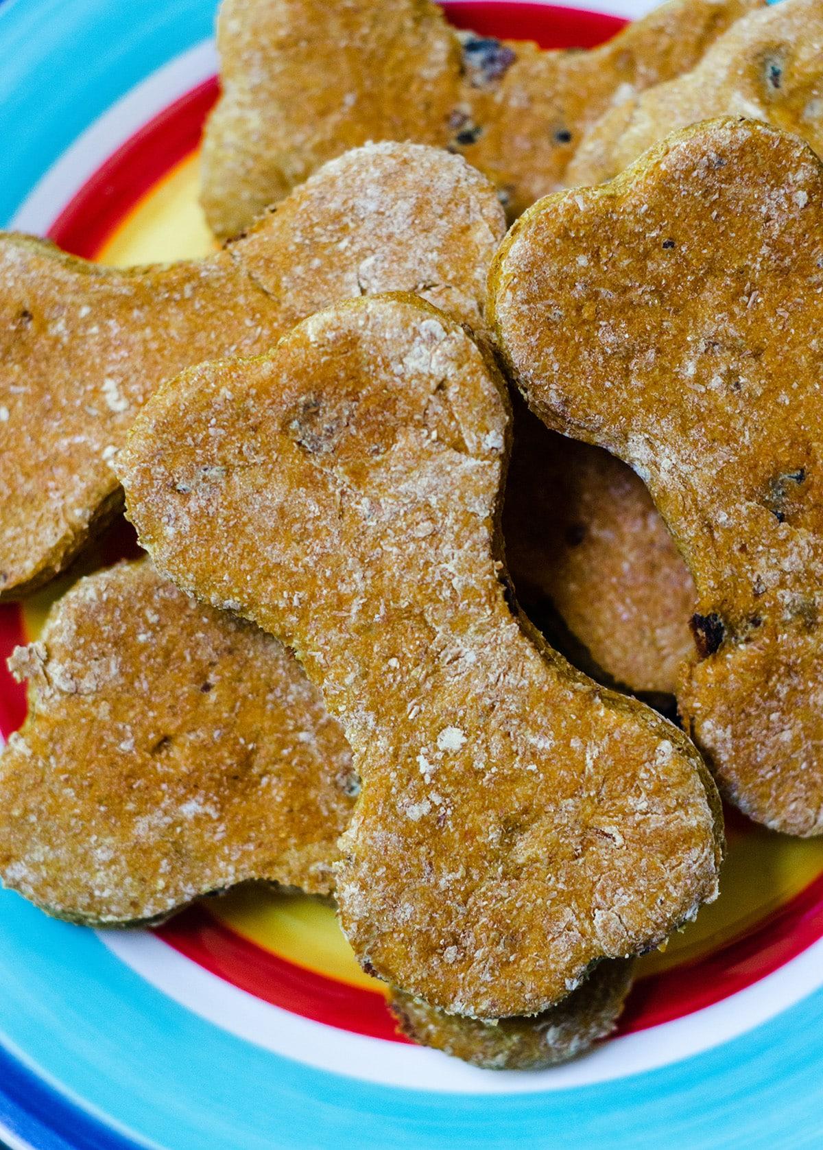 homemade pumpkin dog treats on a plate
