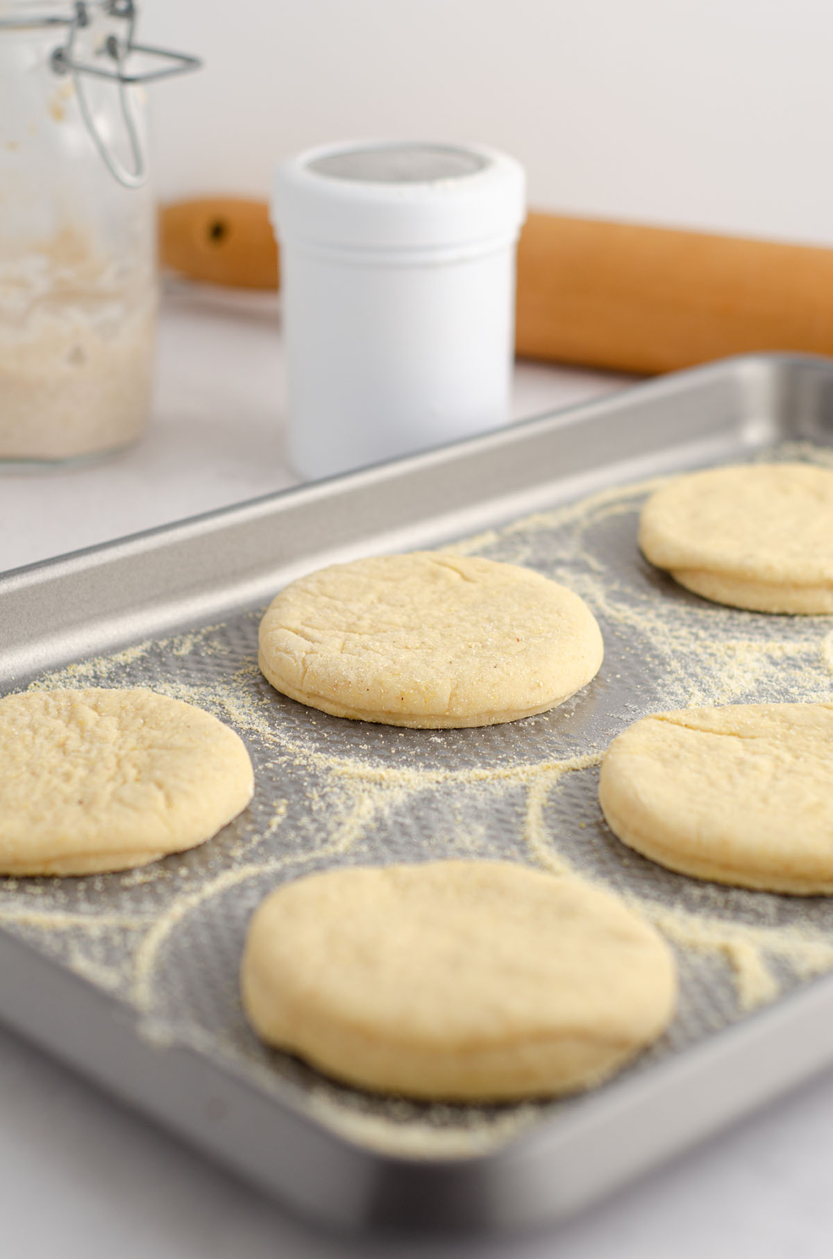sourdough english muffin dough sitting on a baking sheet with cornmeal ready to cook